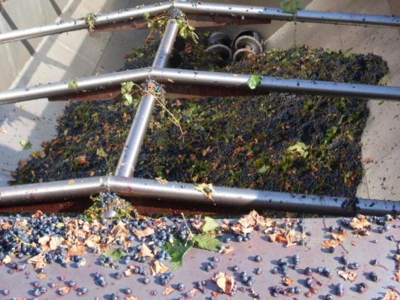 quadri-settore-vinicolo-iqea-andria